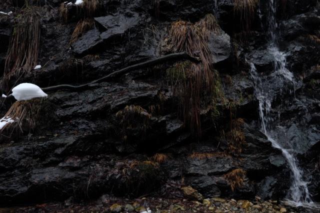 1054 branch waterfall ginzan.jpg