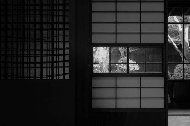 1106 screens drinking room tokyo.jpg